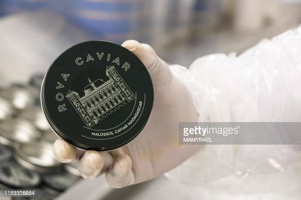 A worker from the company Rova Caviar Madagascar shows a box packaging for caviar at the Acipenser factory on June 4 2019 in Mantasoa Madagascar...