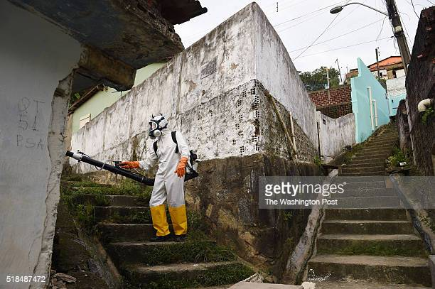 Worker fumigates in the Guabiraba neighborhood for mosquitos on Wednesday March 16, 2016 in Recife, Brazil. The Zika virus is rampant in the region....
