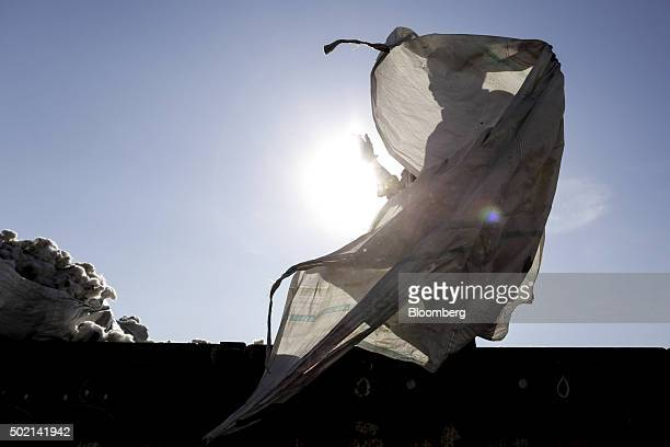 A worker handles a tarp while unloading cotton from a cart at a market in Rajkot Gujarat India on Wednesday Dec 16 2015 World inventories at the end...