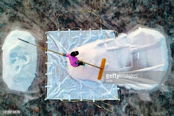 Worker harvests salt from an evaporation pond at a salt factory on May 14, 2021 in Leizhou, Zhanjiang City, Guangdong Province of China.