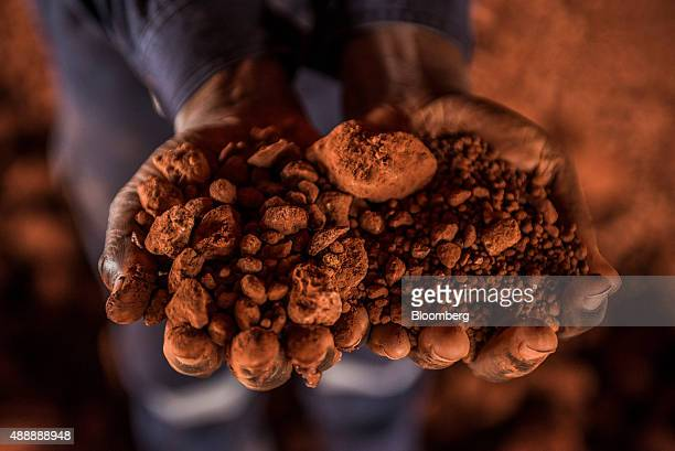 A worker holds crushed bauxite which is refined into aluminum in a storage building at a treatment plant operated by Compagnie des Bauxites de Guinee...