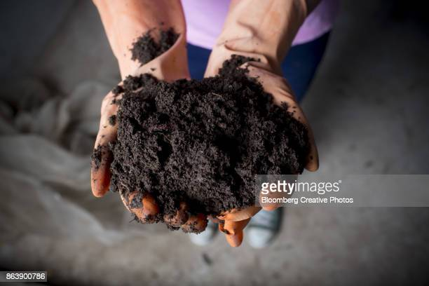 A worker holds organic compost soil