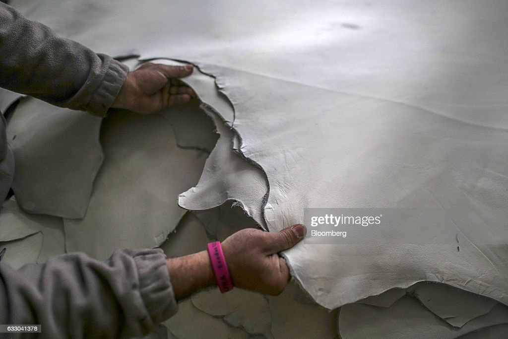 A worker holds sheets of processed leather at the Jalandhar Leather Pvt tannery in Jalandhar Punjab India on Saturday Jan 21 2017 India`s 51 million..
