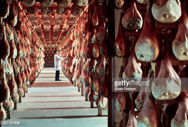 Worker in a Curing Room