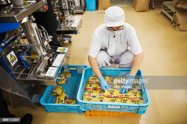 Worker in a factory producing Soba noodles, packing fresh noodles for distribution and sale.