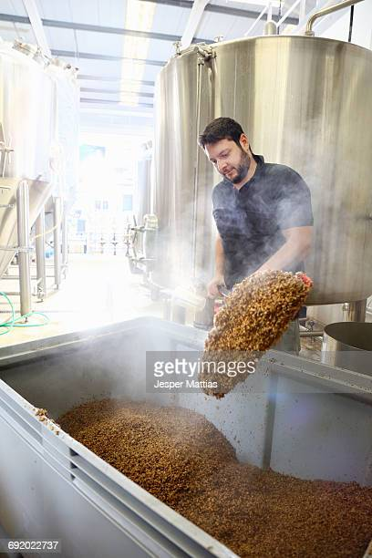 Worker in brewery, emptying grains from mash tun