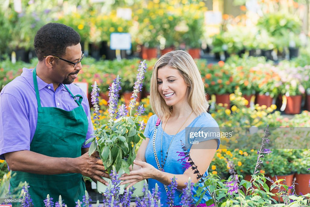 Worker in plant nursery helping a customer : Stock Photo