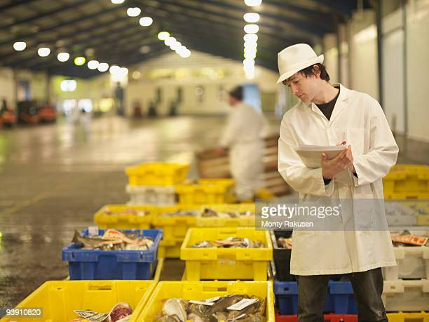 Worker Inspecting Fish In Crates