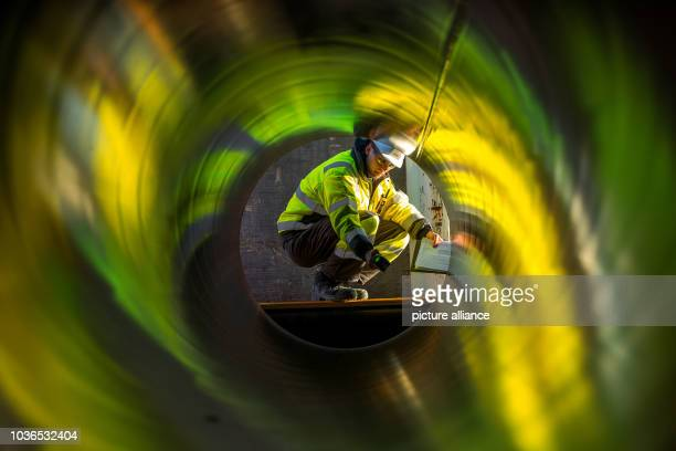 Worker inspects stacks of pipes weighing several tons each which will be used for the construction of the Nord Stream gas pipeline in the...