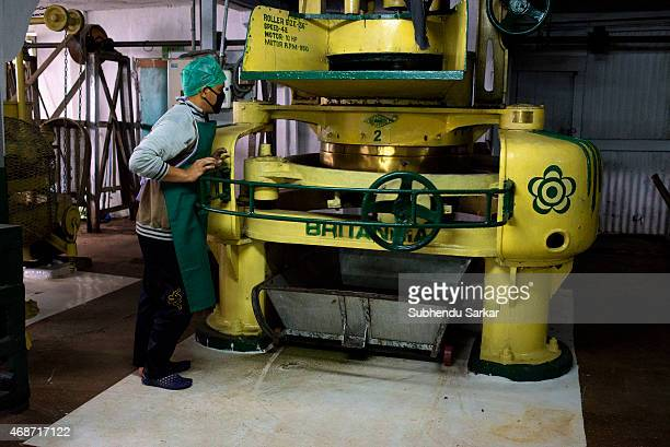A worker inspects tea leaves being rolled by a machine after they have been withered at Makaibari tea factory Set up in 1859 off Kurseong in the...