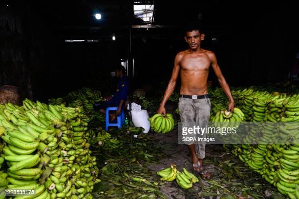 Worker is seen working in a banana wholesale market.