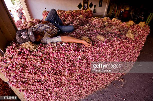 CONTENT] A worker is sleeping on the top of huge stack of shallots in a bulk produce market vegetables farmers market farming production worker...