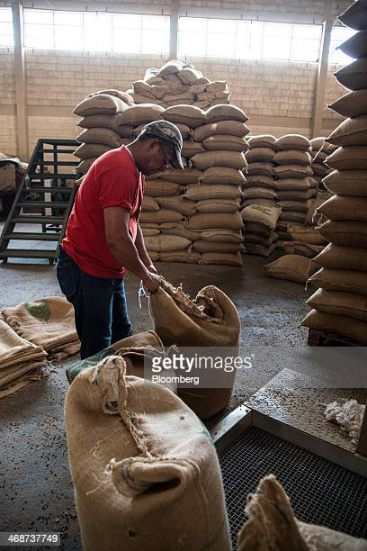 Worker Joao Avelar carries a bag of coffee beans that are going to be roasted at the Cafe Primavera facility in Itapira Brazil on Monday Feb 10 2014...