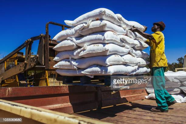 A worker loads sacks of livestock feed into a truck for shipping on the Ehlerskroon farm outside Delmas in the Mpumalanga province South Africa on...
