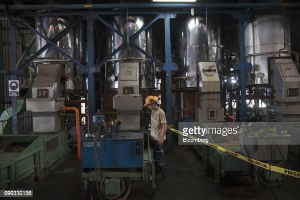 A worker monitors machines during the extraction of oil palm fruits at the Empresa Reforestada de Palma de Peten SA plantation in Sayaxche El Peten...