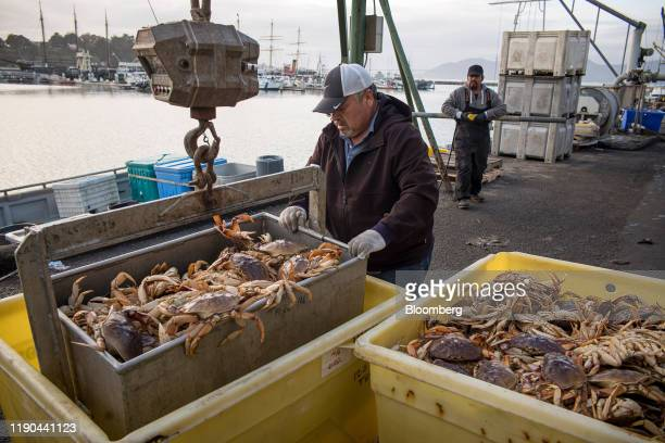 A worker moves Dungeness crab into a bin after being offloaded from a boat at Pier 45 in San Francisco California US on Thursday Dec 19 2019 The...