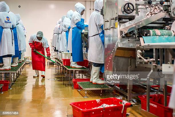 A worker of a fish processing factory cleans floor during working process in a workshop Walvis Bay Namibia June 7 2016 A main product of the factory...