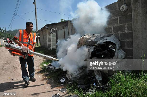 A worker of the Contingencies Committee fumigates against the dengue fever mosquito Aedes aegypti in Tegucigalpa on July 30 2013 An unusually potent...