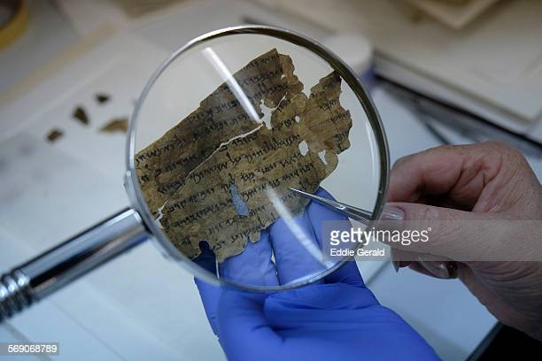 Worker of the Israeli Antiquity Authority sews fragments of the Dead Sea scrolls which includes biblical verses in a preservation laboratory of the...