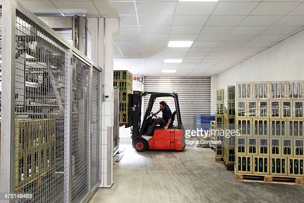 Worker on forklift moving cases of wine