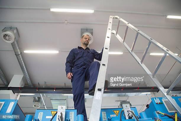 worker on ladder in industrial plant - sigrid gombert - fotografias e filmes do acervo