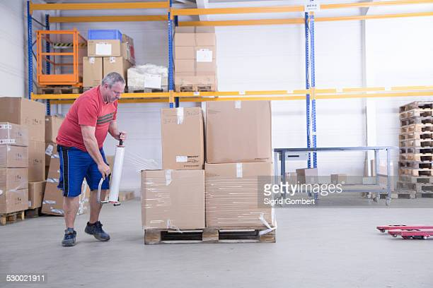 worker packing at healthcare warehouse - sigrid gombert stock pictures, royalty-free photos & images