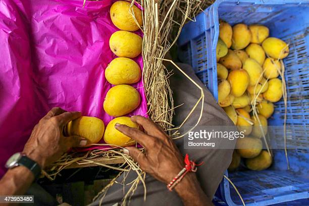 A worker packs Alphonso mangoes into a wooden crate at a local mango trader's premises in Ratnagiri Maharashtra India on Saturday May 16 2015 The...