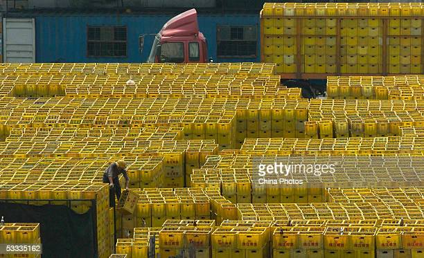 A worker piles up reclaimed empty beer bottle in Guangzhou Zhujiang Beer Group Company factory on August 6 2005 in Guangzhou of Guangdong Province...