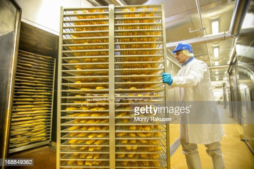 Worker preparing haddock fish for smoking in food factory
