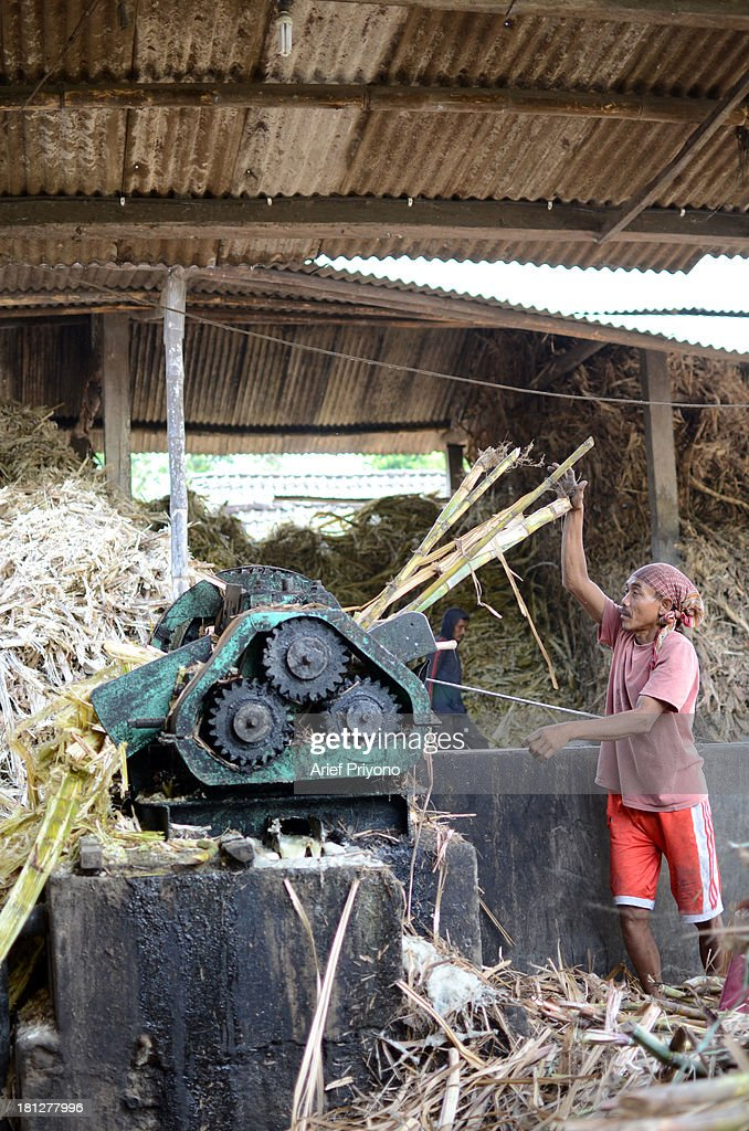 A worker pressing sugar cane, part of the process of making brown sugar in a small factory in Slumbung village. Most Indonesian people use brown sugar to sweeten foods and beverages. Brown sugar that made in the traditional way is cheaper than white sugar. Indonesia still depends on imported white sugar to supplement its own production. The Ministry of Commerce expects to import as much as 2.26 million tonnes of raw sugar this year. Indonesian sugar consumption is expected to increase approximately 3 percent to 5.2 million tonnes this year due to rising industrial demand. The International Sugar Organization estimates world sugar production on October 1, 2013 October 1, 2014 will be down 1.8 percent to 178.5 million tonnes. Meanwhile, demand for sugar in the period rose by 1.9 percent to 175 million tonnes..