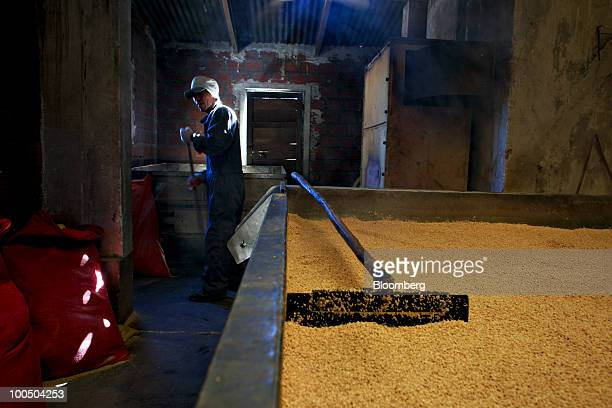 A worker processes harvested quinoa seeds at a factory in Challapata Bolivia on Wednesday May 12 2010 Quinoa imports to the US rose from 74 million...