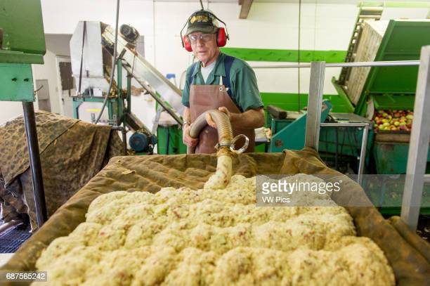 Worker pumping out pulp for making apple cider at an orchard in Wexford Pennsylvania USA