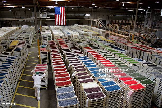 A worker pushes trays of jelly beans in a warehouse at the Jelly Belly candy factory June 10 2004 in Fairfield California The late former US...