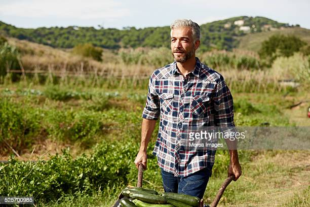 Worker pushing vegetable cart at organic farm