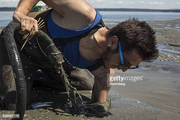 A worker reaches into sand while searching for geoducks during harvest on a beach leased by Taylor Shellfish Co near Olympia Washington US on Tuesday...