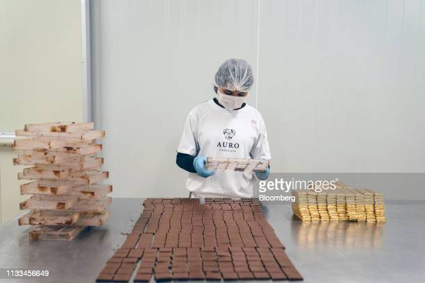 A worker removes pieces of chocolate from a mold at the Auro Chocolate production facility in Calamba Laguna province Philippines on Monday Feb 11...