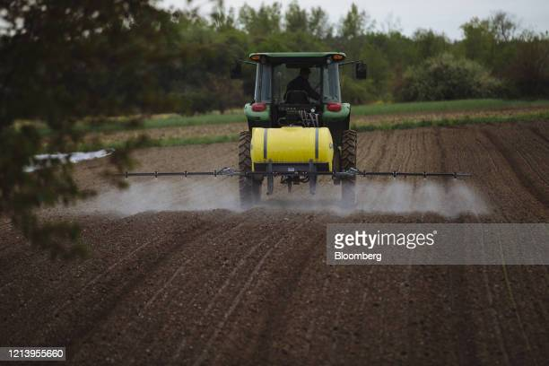 A worker rides a tractor while spraying organic pesticide on crops at a farm in Hudson New York US New York US on Monday May 18 2020 Livestock...