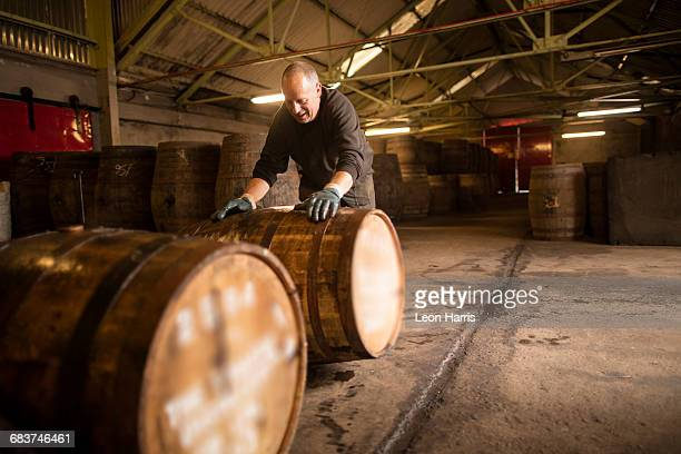 worker rolling whisky cask in whisky distillery warehouse - distillery stock pictures, royalty-free photos & images