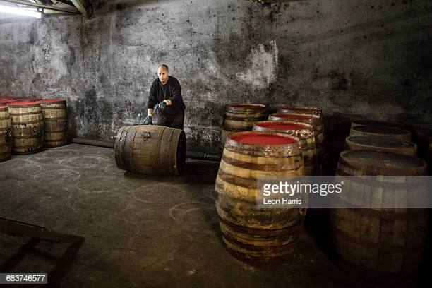 Worker rolling whisky cask in whisky distillery warehouse