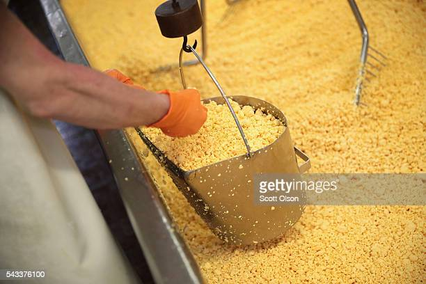 A worker scoops up a pail of Colby cheese curds that will be pressed into 40 pound blocks of cheese at the Widmer's Cheese Cellars on June 27 2016 in...