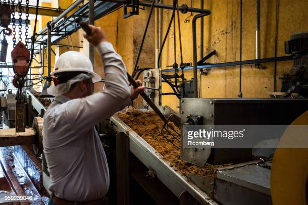 A worker separates agave fibers moving down a conveyor belt at the Becle SAB Jose Cuervo distillery in the town of Tequila Jalisco state Mexico on...