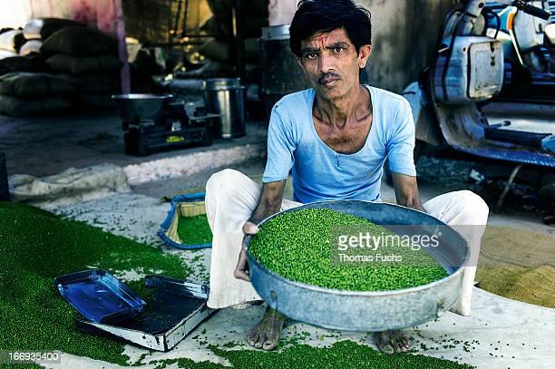 Worker sieving peas just off the main street market in Jodhpur, Rajasthan, India