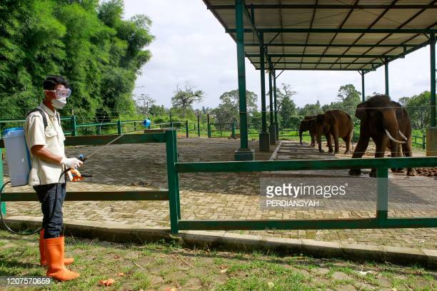 A worker sprays disinfectant at an amusement park in Bandar Lampung on March 18 amid concerns of the COVID19 coronavirus outbreak