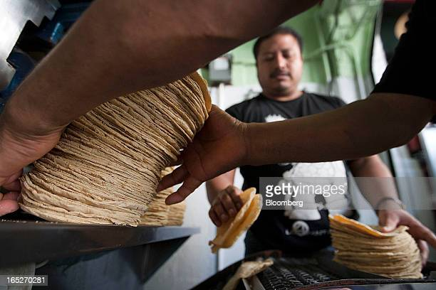 A worker stacks tortillas removed from the machine in a tortilla bakery at the Zona Rosa in Mexico City Mexico on Monday April 1 2013 Mexico's...