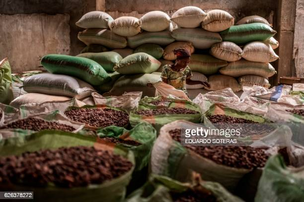 A worker stands among sacks of cocoa beans at the SCAK cocoa processing plant in Beni on November 14 2016 Cocoa farming in the Beni area started in...