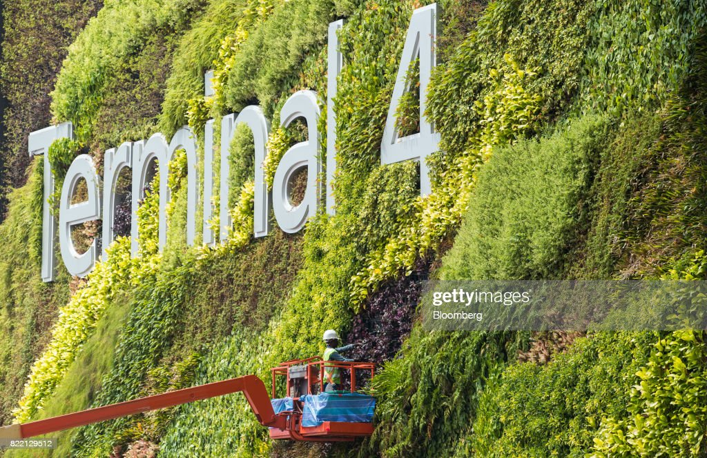 A worker stands in a cherry picker platform while carrying out gardening work on foliage surrounding a sign during a media preview of the new Terminal 4 (T4) at Changi Airport in Singapore, on Tuesday, July 25, 2017. The terminal, which is scheduled to open later this year, will feature an array of 'fast and seamless travel' (FAST) technologies to speed people-processing without the need for human supervision, from face-recognition software to automated bag-tagging and checking. Photographer: Nicky Loh/Bloomberg via Getty Images