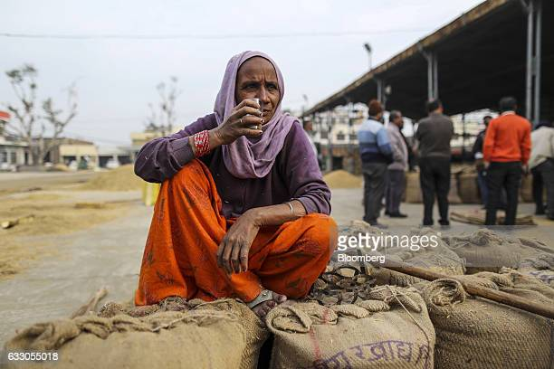 A worker takes a break and drinks chai while sitting on sacks of rice paddy at an Agricultural Produce Market Committee wholesale market in Jalandhar...