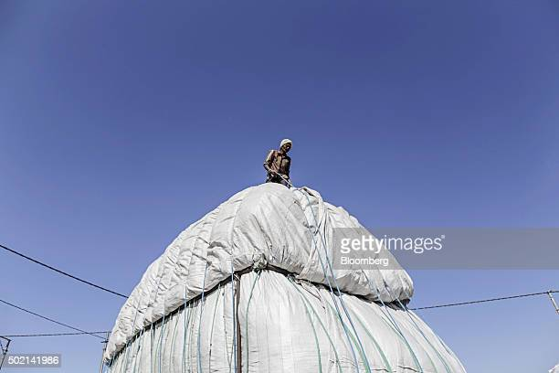 A worker ties a tarp on a truck loaded with cotton at a market in Rajkot Gujarat India on Wednesday Dec 16 2015 World inventories at the end of this...