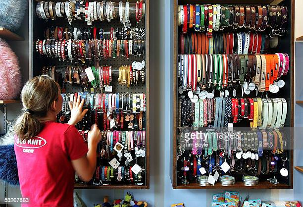 Worker Tiffany Baranowski arranges cat and dog collars in front of the cats and dogs health food store 'For Dog's Sake' July 21 2005 in Chicago...