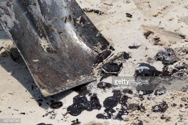 A worker uses a shovel to pick up oily globs that washed ashore from the Deepwater Horizon oil spill in the Gulf of Mexico July 9 2010 in Waveland...